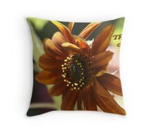 Autumn breeze made me think of you today. Throw Pillow