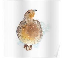 Partridge in the Snow Poster