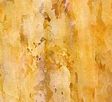 Marblelike by Piero