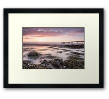 Seaweed Sunset Framed Print