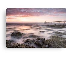 Seaweed Sunset Metal Print