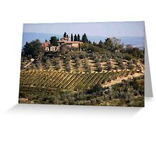 Tuscan Vineyards and Olive Orchards Greeting Card