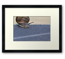 I Can See The Finish Line Framed Print