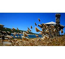 Cape Leuwin  Photographic Print