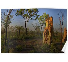 Termite Mound - Northern Territory AUS Poster