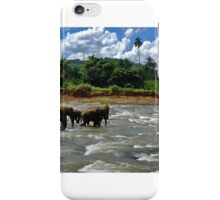 Elephant Orphanage iPhone Case/Skin