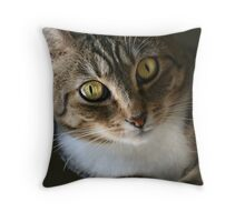 Maggie the Tabby Throw Pillow