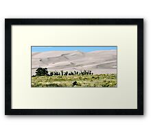 #529    Great Sand Dunes Of Colorado Framed Print