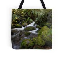 A Glimpse of Sun at the Rainforest Gallery Tote Bag