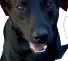 Firefighter dog Sticker
