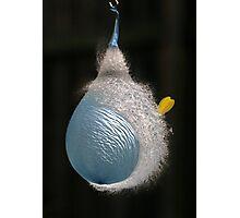 Blue Balloon Photographic Print