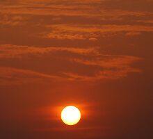Sunrise in New Delhi by Vinay Rathore