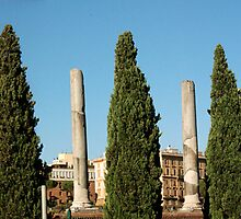 ROMAN FORUM, ITALY by Eamon Fitzpatrick