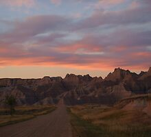 Into the Badlands by Rosemaree
