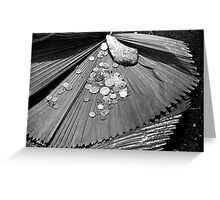 It is about the money! Greeting Card