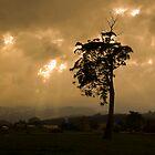 Storm over Wilmot Tasmaina 2008 by cradlemountain