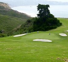 Great Day for Golf ~ Torrey Pines ~ La Jolla California by Marie Sharp