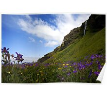 Beautiful Iceland in the Summer Poster