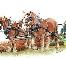 draft horses by ferrel cordle