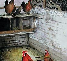 Chicken coop by ferrel cordle