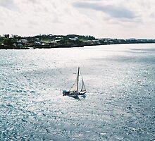 Under full sail by Steve Mezardjian
