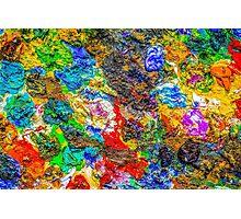 Color palette Photographic Print