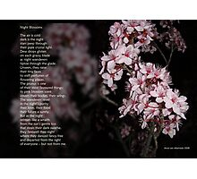 Night Blossoms (poster) Photographic Print