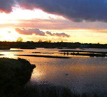 Sunset over the marshes by Allan McKean