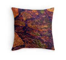 A Poem in Low light. Throw Pillow
