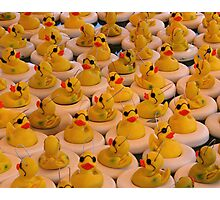 Cool Rubber Duckies Photographic Print