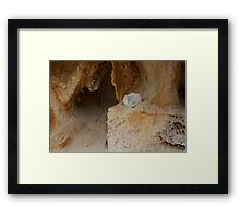 In the Cave Framed Print