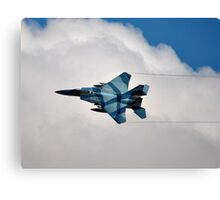 U.S. Air Force F-15 Eagle Canvas Print