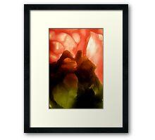 amber/green #5 Framed Print
