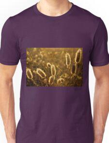 Wild Spikes Unisex T-Shirt