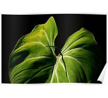 On Friendship:  Liannes Leaf... Kauai Sensual Series Poster