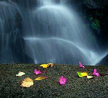 Idyllic Waterfall by ccaetano