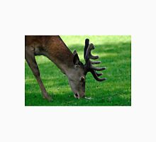 Male Red Deer Close-up  Unisex T-Shirt