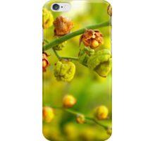 Foliage background iPhone Case/Skin