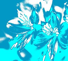 Homescape - blue and white orchid 2 by Paul Davenport