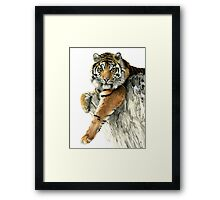 The Big Guy Framed Print