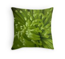 Spider Mum Throw Pillow
