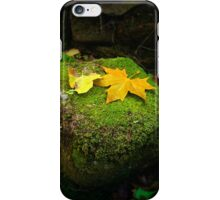 Leafs on Rock iPhone Case/Skin