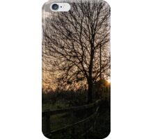 Late Afteroons iPhone Case/Skin
