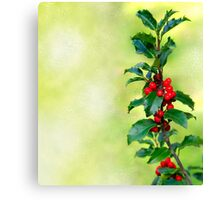 Holly Branch  Canvas Print