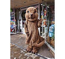 Town Mascot Photographic Print