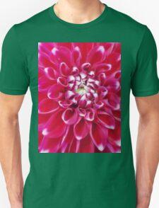 Soft red petals of Dahlia T-Shirt