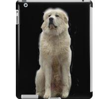 The Great Pyrenees mountain dog iPad Case/Skin