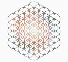 Pinwheel [Vibrant Double Flower] Flower of Life | Sacred Geometry by SirDouglasFresh