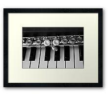 Music Lesson Framed Print