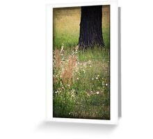 Meadow composition... Greeting Card